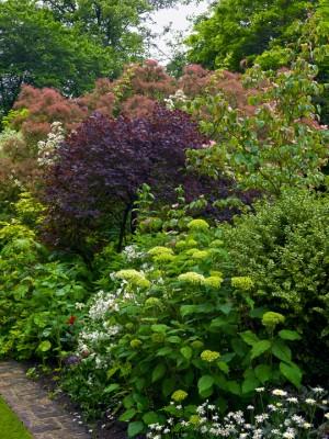 wpid4848-High-Summer-Garden-GGLO108-nicola-stocken.jpg