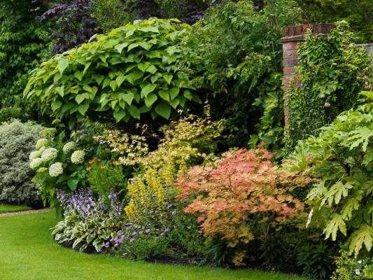 wpid4868-High-Summer-Garden-GGLO119-nicola-stocken.jpg