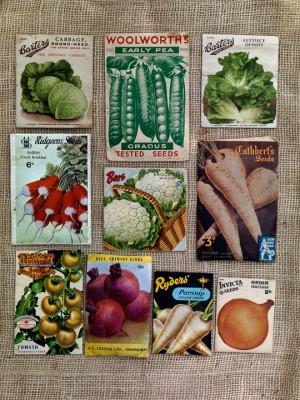 wpid5014-Heritage-Seed-Library-GRUY008-nicola-stocken.jpg