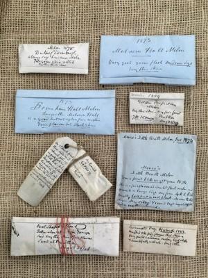 wpid5020-Heritage-Seed-Library-GRUY011-nicola-stocken.jpg