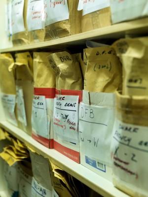 wpid5028-Heritage-Seed-Library-GRUY015-nicola-stocken.jpg