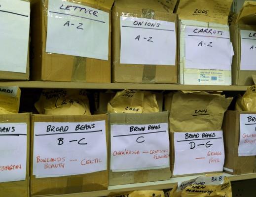 wpid5030-Heritage-Seed-Library-GRUY016-nicola-stocken.jpg