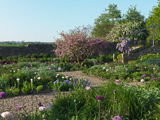 Thumbnail image for Holt Organic Farm in Spring
