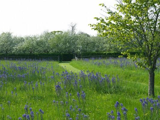 wpid5235-Holt-Farm-Spring-GHOF001-nicola-stocken.jpg