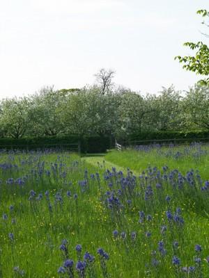 wpid5237-Holt-Farm-Spring-GHOF002-nicola-stocken.jpg
