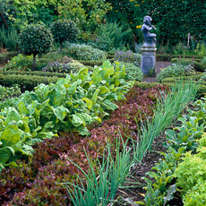 Thumbnail image for Kitchen Garden Styles