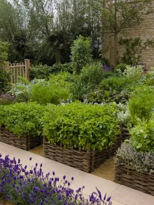 wpid5516-Kitchen-Gardens-DESI123-nicola-stocken.jpg