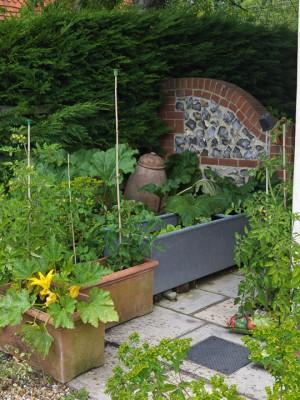 wpid5540-Kitchen-Gardens-GBAY033-nicola-stocken.jpg