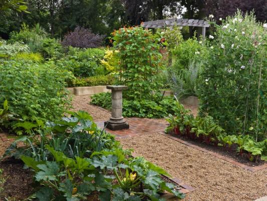 wpid5542-Kitchen-Gardens-GBUD017-nicola-stocken.jpg