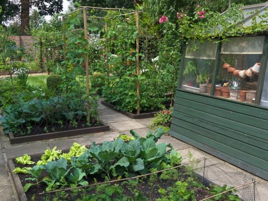 wpid5544-Kitchen-Gardens-GBYF049-nicola-stocken.jpg