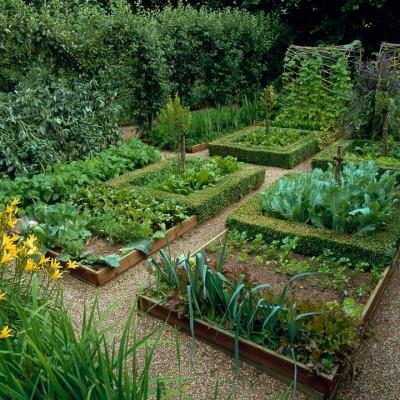 wpid5546-Kitchen-Gardens-GCLI024-nicola-stocken.jpg