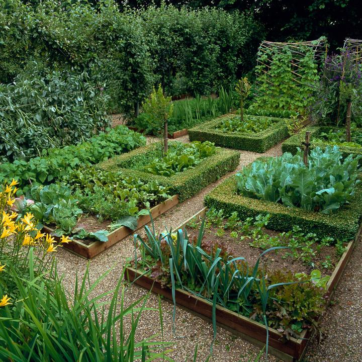 Kitchen Garden Styles