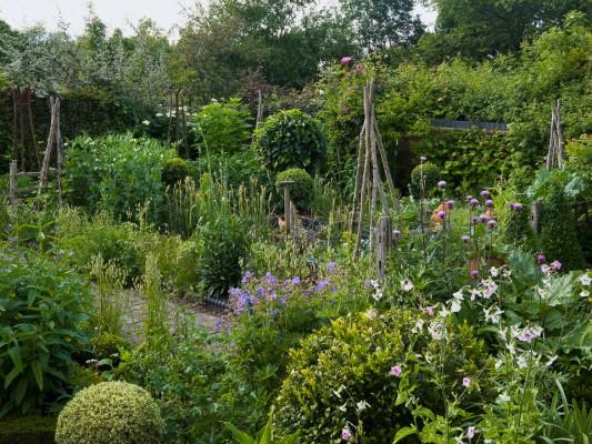 wpid5550-Kitchen-Gardens-GDIA081-nicola-stocken.jpg