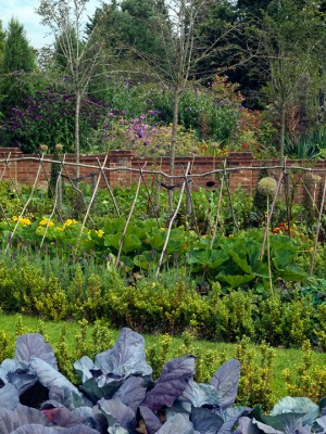 wpid5556-Kitchen-Gardens-GDOW049-nicola-stocken.jpg