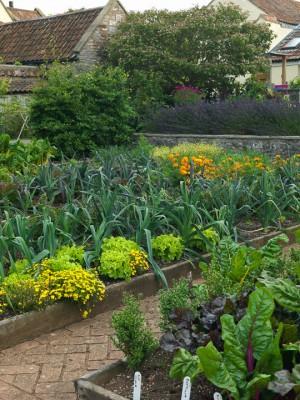 wpid5568-Kitchen-Gardens-GHOF086-nicola-stocken.jpg