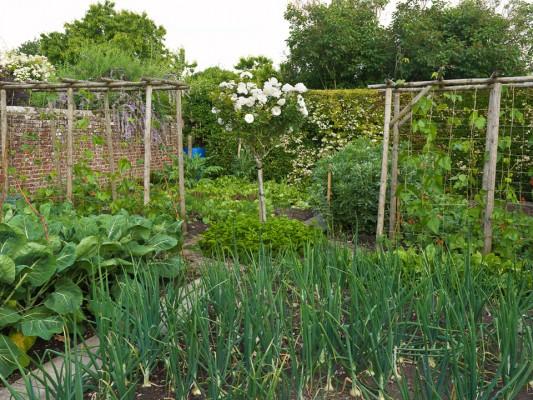 wpid5574-Kitchen-Gardens-GMHB002-nicola-stocken.jpg