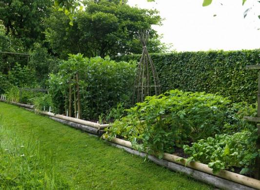 wpid5580-Kitchen-Gardens-GNET038-nicola-stocken.jpg