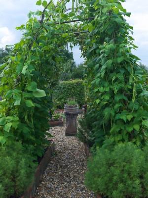 wpid5590-Kitchen-Gardens-GSTU031-nicola-stocken.jpg
