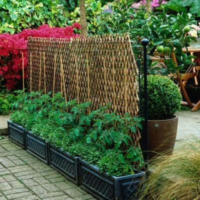wpid5594-Kitchen-Gardens-GTUD005-nicola-stocken.jpg
