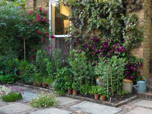 wpid5596-Kitchen-Gardens-GVIN032-nicola-stocken.jpg
