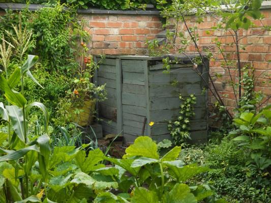 wpid5608-Kitchen-Gardens-GWET035-nicola-stocken.jpg
