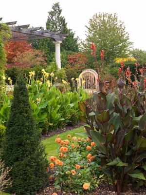 wpid5771-Maryfield-Garden-GMAY007-nicola-stocken.jpg
