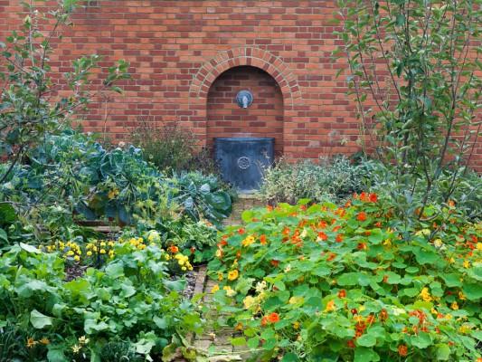 wpid5787-Maryfield-Garden-GMAY015-nicola-stocken.jpg
