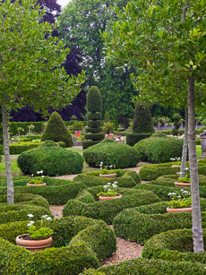 Thumbnail image for Topiary Garden in August