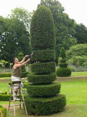 wpid5854-Topiary-Garden-GOLR001-nicola-stocken.jpg