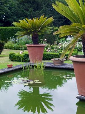 wpid5876-Topiary-Garden-GOLR012-nicola-stocken.jpg
