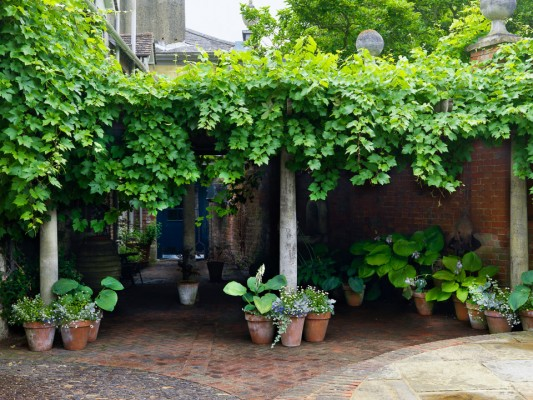 wpid5892-Topiary-Garden-GOLR020-nicola-stocken.jpg