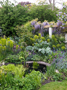 Thumbnail image for Chiswick Garden in May