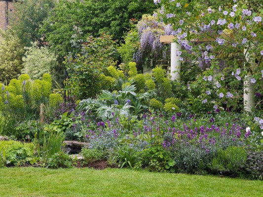 wpid5930-Chiswick-Garden-GORC012-nicola-stocken.jpg