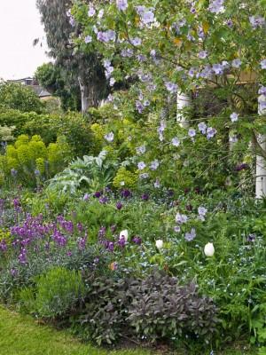 wpid5932-Chiswick-Garden-GORC013-nicola-stocken.jpg