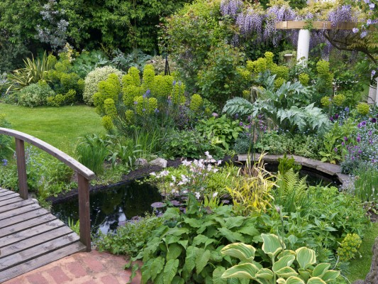 wpid5938-Chiswick-Garden-GORC016-nicola-stocken.jpg