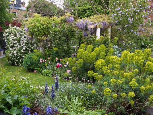 wpid5944-Chiswick-Garden-GORC019-nicola-stocken.jpg