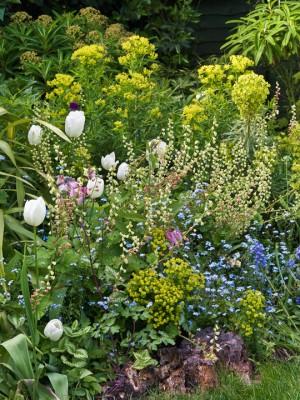 wpid5954-Chiswick-Garden-GORC024-nicola-stocken.jpg