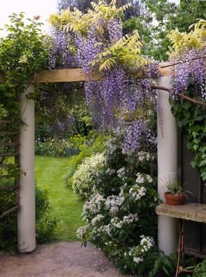 wpid5968-Chiswick-Garden-GORC031-nicola-stocken.jpg