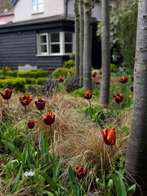 wpid6299-One-Brook-Cottage-GONE015-nicola-stocken.jpg
