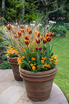 Thumbnail image for Spring Containers