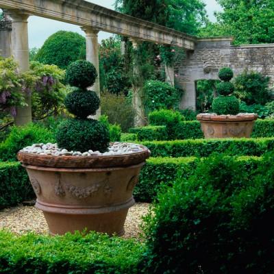 wpid8668-Topiary-For-All-Seasons-DFOR003-nicola-stocken.jpg