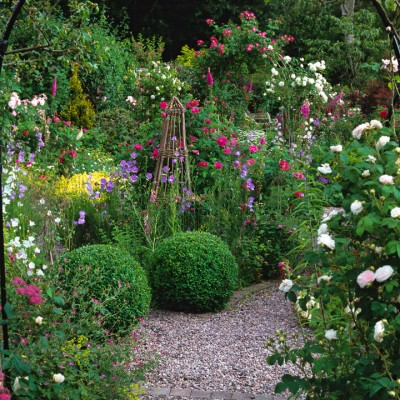 wpid8670-Topiary-For-All-Seasons-DHEB265-nicola-stocken.jpg