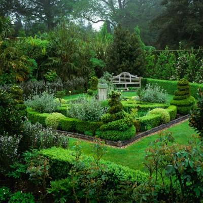 wpid8672-Topiary-For-All-Seasons-DPAR066-nicola-stocken.jpg