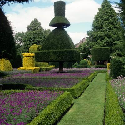 wpid8680-Topiary-For-All-Seasons-DTOP028-nicola-stocken.jpg