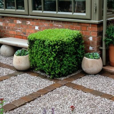 wpid8686-Topiary-For-All-Seasons-DTOP096-nicola-stocken.jpg