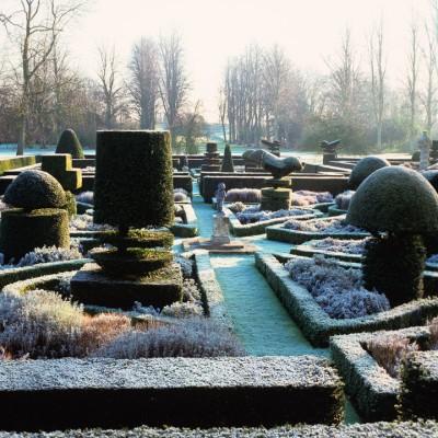 wpid8688-Topiary-For-All-Seasons-DTOP102-nicola-stocken.jpg
