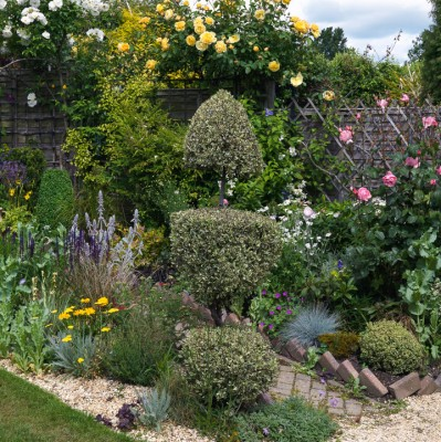 wpid8702-Topiary-For-All-Seasons-GBEN016-nicola-stocken.jpg