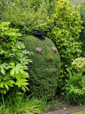 wpid8704-Topiary-For-All-Seasons-GBYF065-nicola-stocken.jpg