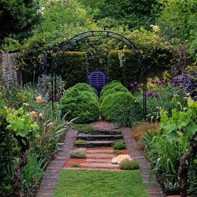 wpid8708-Topiary-For-All-Seasons-GELT015-nicola-stocken.jpg