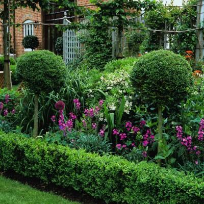 wpid8716-Topiary-For-All-Seasons-GLIN045-nicola-stocken.jpg